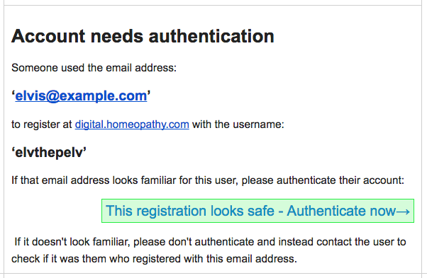 Registration authentication email